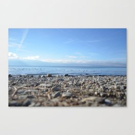 Rocky Beach Descent Canvas Print