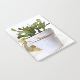 Christmas Cactus Notebook