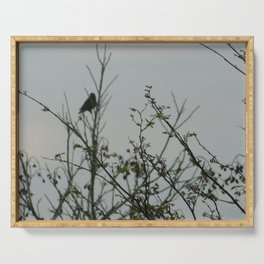 Bird in the Brush Serving Tray