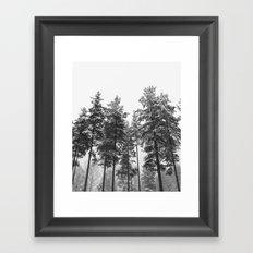 simply trees in winter Framed Art Print