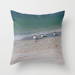Dolphin Watching on Lover's Key Throw Pillow