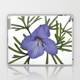 Viola Pedata, Birds-foot Violet #society6 #spring Laptop & iPad Skin