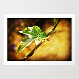 The Twisted Vine Art Print