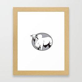 Bull zebu vintage logo Framed Art Print