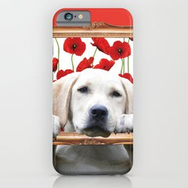 Golden Retriever with frame and poppies iPhone Case