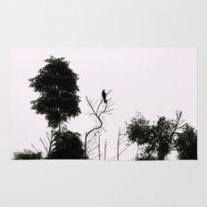 Black Bird Rug
