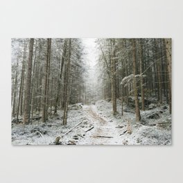 For now I am Winter - Landscape photography Canvas Print