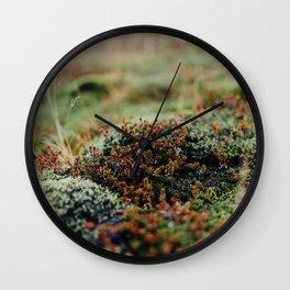 Iceland Moss Wall Clock