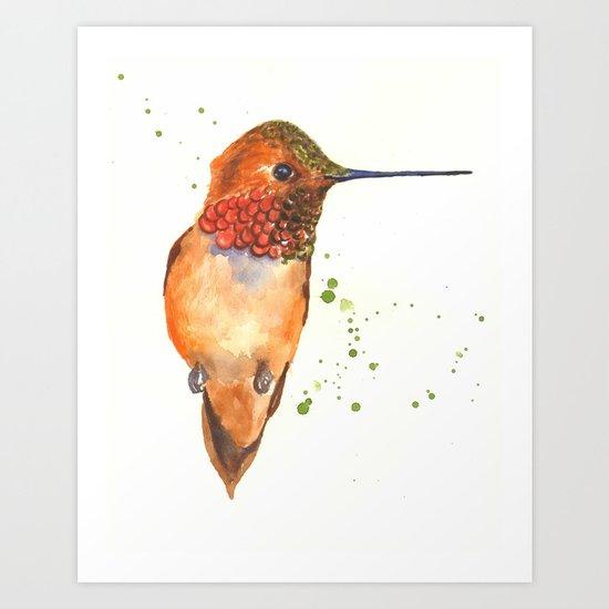 hummingbird, exotic birds, bird art Art Print