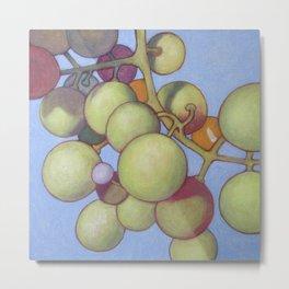 Grapes No.8 Metal Print