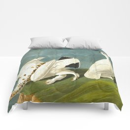 American Ptarmigan and White-tailed Grous Audubon Birds Vintage Scientific Hand Drawn Illustration Comforters
