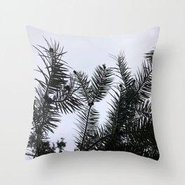 Silver Fir Abies Alba Abstract Throw Pillow
