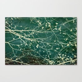 boughs Canvas Print