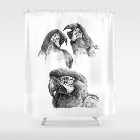 Macaw study SK0114 Shower Curtain