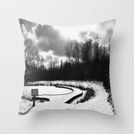 Dark Skies Pond Throw Pillow