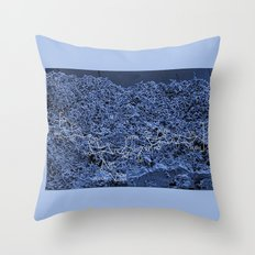 8 More Views of Kefir #4 Throw Pillow