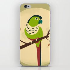 Green Cheek Conure iPhone & iPod Skin
