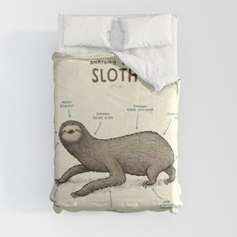 Anatomy of a Sloth Comforters
