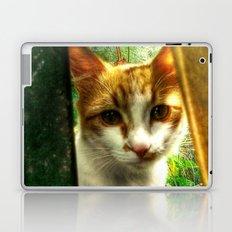 Daisy Cat Laptop & iPad Skin