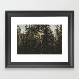 Sunset in the Woods - Nature Photography Framed Art Print