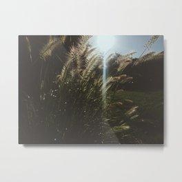 A Breeze Metal Print