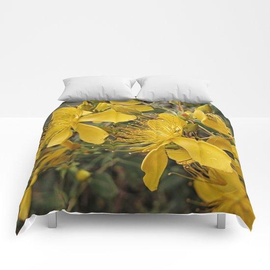 Beautiful St Johns Wort Comforters