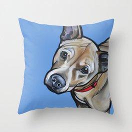 Fenway Throw Pillow