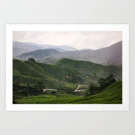 Boh Tea Estate Art Print
