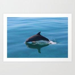 Dolphins on the Sand Flats Art Print
