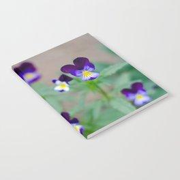 Violas Notebook