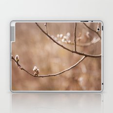 Willows Laptop & iPad Skin