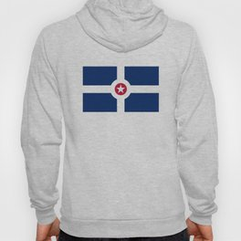indianapolis city flag united states of america Hoody
