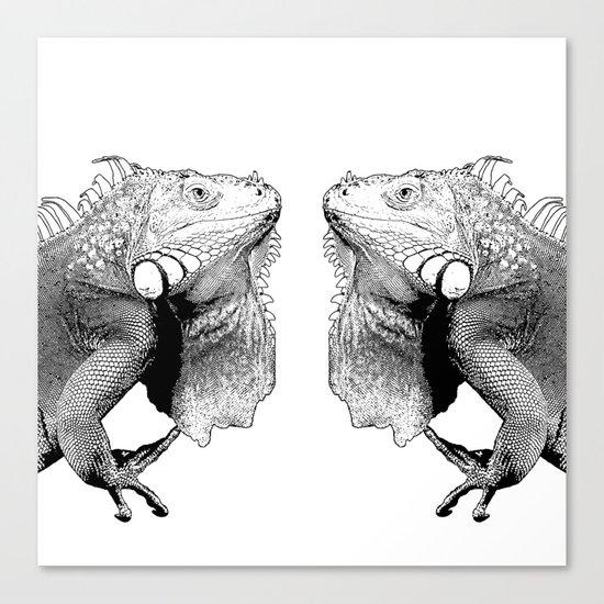 Iguanas (animals) Canvas Print