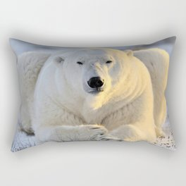 Lovely Giant Adult Bear Sitting On Cold Ground Close Up Ultra HD Rectangular Pillow