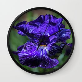 Insatiable Iris Wall Clock