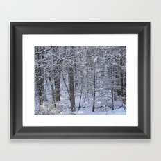 Coverage Framed Art Print