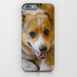 Josh The Corgi iPhone Case