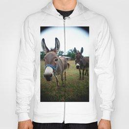 Doting Donkeys Hoody
