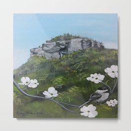Sugar Loaf Mountain Metal Print