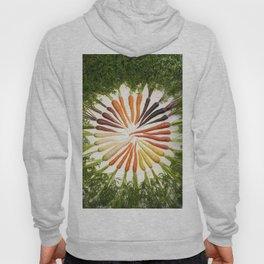 Carrot Color Wheel Hoody
