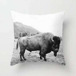 Alaska Bison Throw Pillow