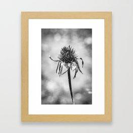 Le dernier souffle Framed Art Print