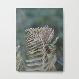 Fern Leaf Metal Print