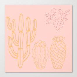 Pastel cactus in desert Canvas Print
