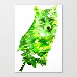 Wooden Tails Canvas Print
