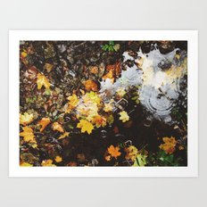 Detail of autumnal leaves and rain in a puddle. Norfolk, UK Art Print