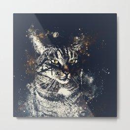 koko the cat wsfn Metal Print