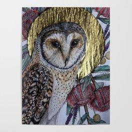 Australian Masked Owl Poster