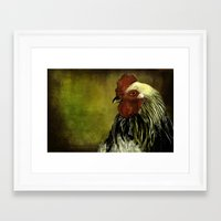 rooster Framed Art Prints featuring Rooster by LudaNayvelt