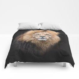 Closeup Portrait of a Male Lion Comforters